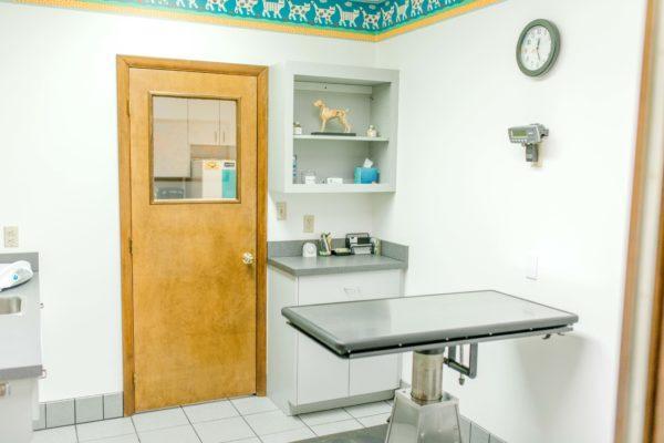 Madison Vet Clinic